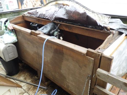 カメ小屋掃除 (2)