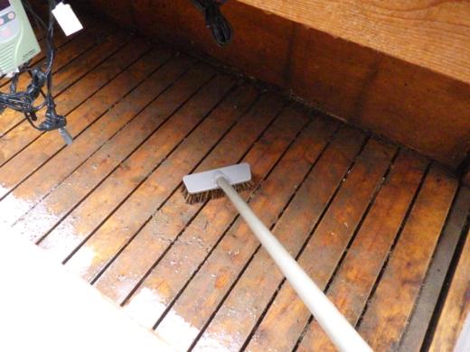 カメ小屋掃除 (9)