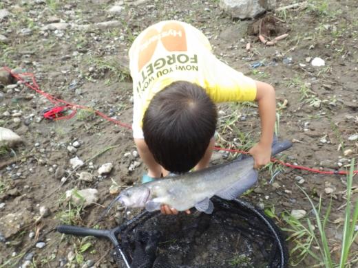 大利根橋で釣り (28)