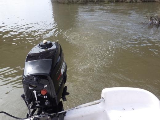 大利根橋で釣り (46)