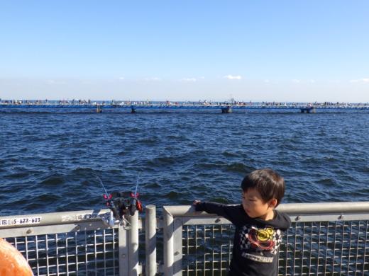 本牧海釣り施設 (10)