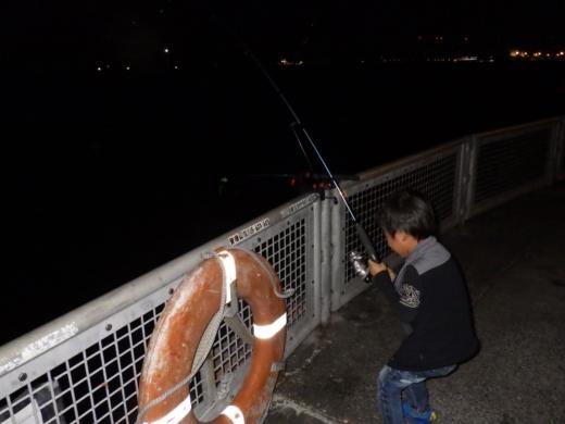 本牧海釣り施設 (19)
