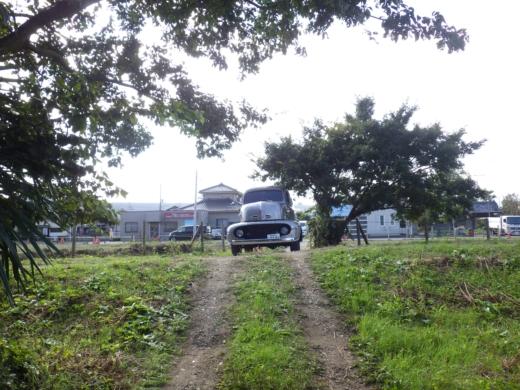 中川の釣り (1)
