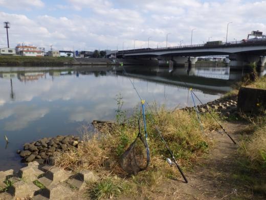 中川の釣り (4)