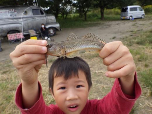 中川の釣り (10)