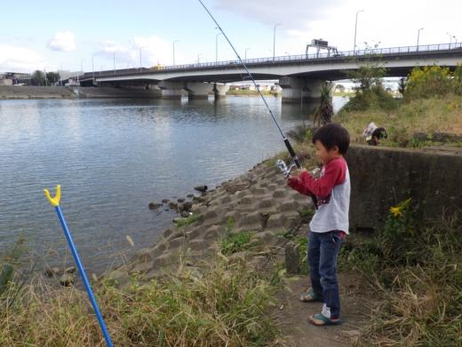 中川の釣り (13)