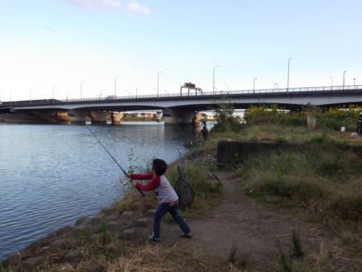 中川の釣り (16)