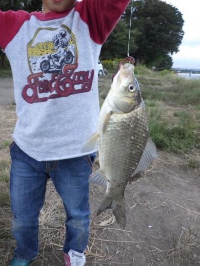 中川の釣り (17)
