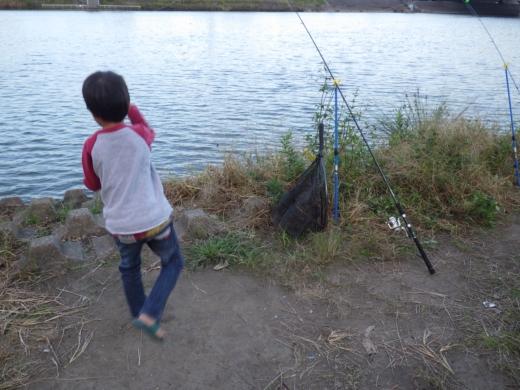 中川の釣り (18)