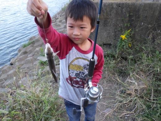 中川の釣り (20)