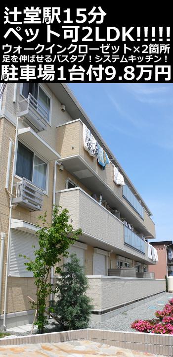 ■物件番号4649 辻堂駅15分!ペット可!築浅2LDK+WIC!2階カド!P無料9.8万円!収納多い!