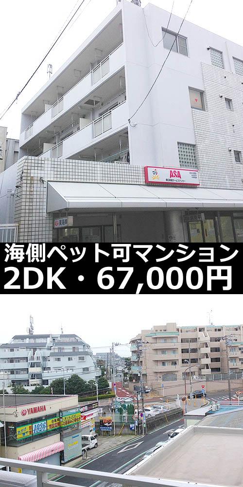 ■物件番号4635 2DKマンション!ペット可!ネコも可!最上階4階カド!駅も海も歩ける!格安6.7万円