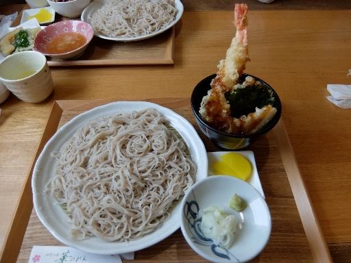 ミニ海老天丼と更科そばセット