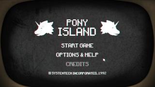 PONY_02.jpg