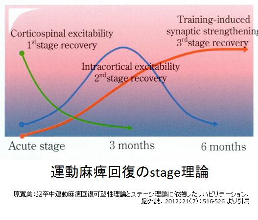 運動麻痺回復のステージ理論