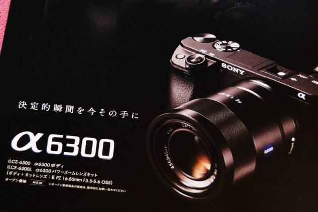 DSC05507 (1)0001