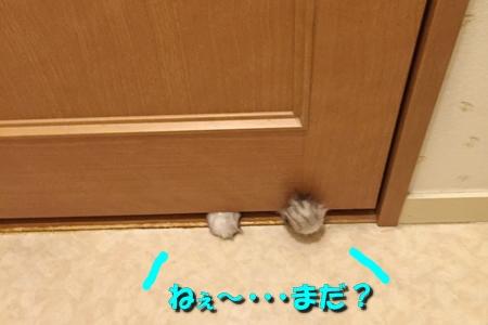 トイレ(1)11
