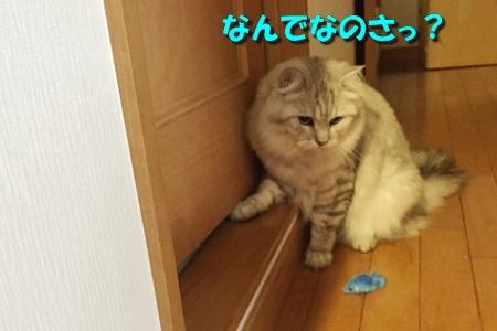 トイレ(2)4