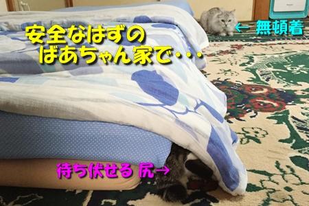 おねえが小話①3