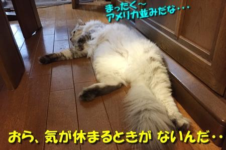 おねえが小話①7