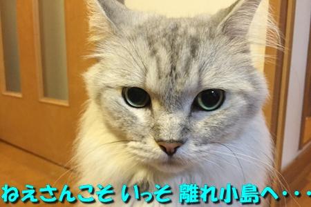 おねえが小話②5
