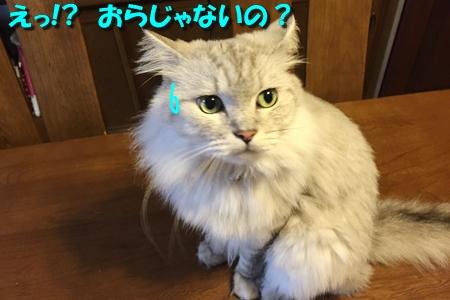 おねえが小話③2