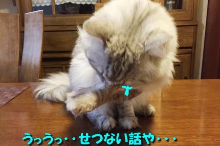 おねえが小話③1