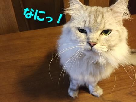 おねえが小話③3
