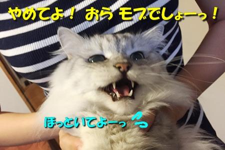 おねえが小話③5