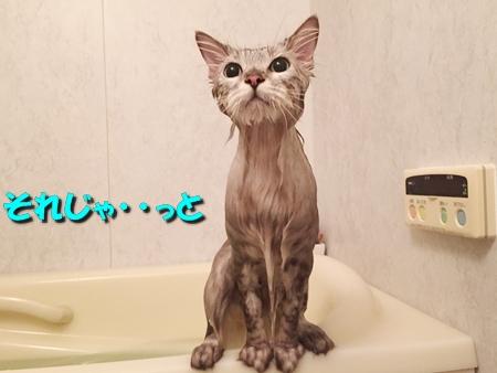 お風呂に入ってお出迎え準備6