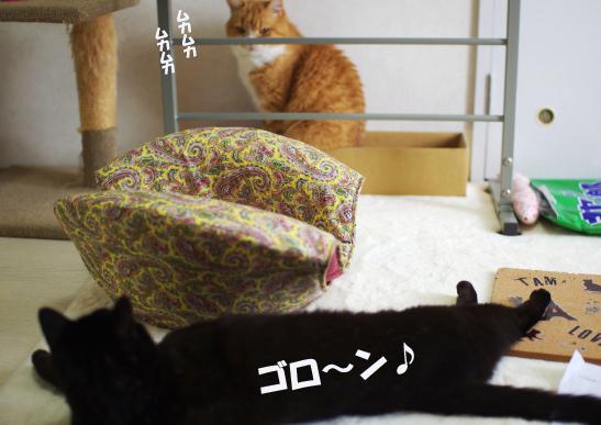 ニヤニヤ¥^-あsd^-あs^¥だsdのコピー