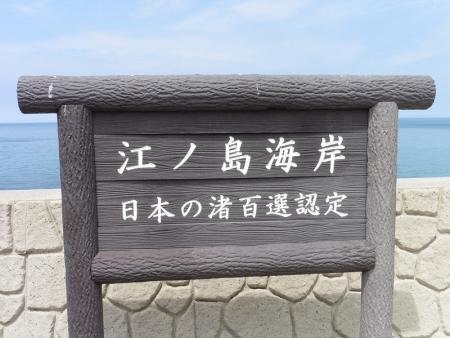 5-P1050939.jpg