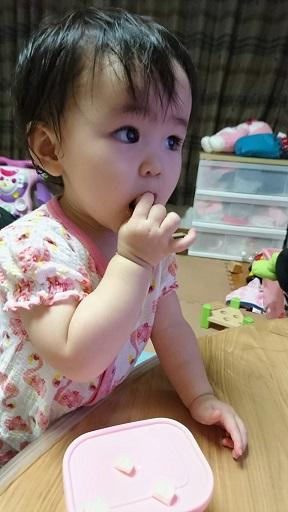 2016-8-6食欲旺盛♪