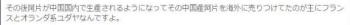tok日本のフリーメーソン=スコットランド・グランドロッジ系列=シオニストユダヤの手羽先