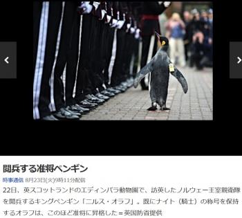 news閲兵する准将ペンギン