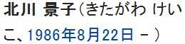 wiki北川景子