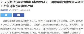 newsアフリカゾウの密猟は日本のせい? 国際環境団体が潜入調査した象牙取引の実態とは