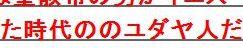 tokTFAP@トリノの聖骸布2