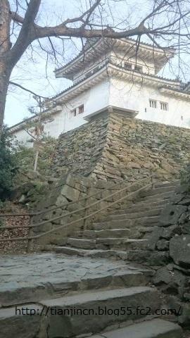 和歌山城天守閣6