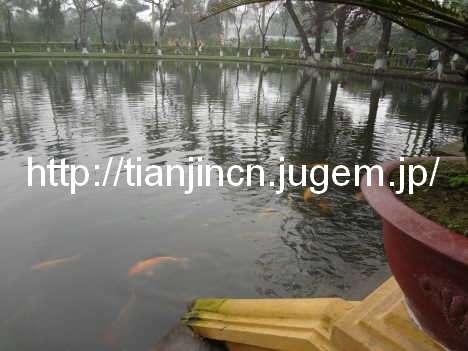 ハノイ ホーチミンの家(ホーおじさんの家) Nha San Bac Ho Chi Minh 胡志明主席故宮記念館9