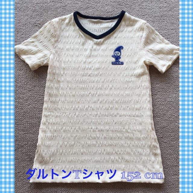 ダルトンTシャツ152センチ