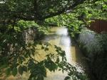 大和橋から見た白川201658