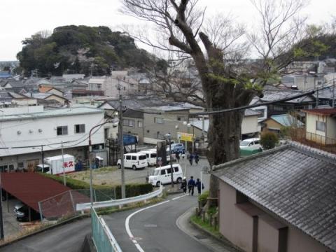 諏訪神社大ケヤキ