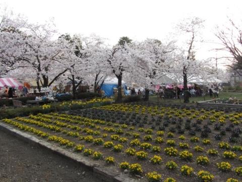 上田城二の丸