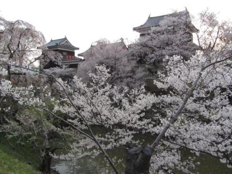 上田城櫓門・南櫓・北櫓