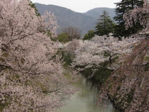 上田城内堀