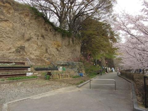 尼ヶ淵の崖