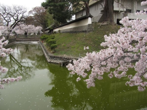上田藩主居館(御屋敷)跡の水堀