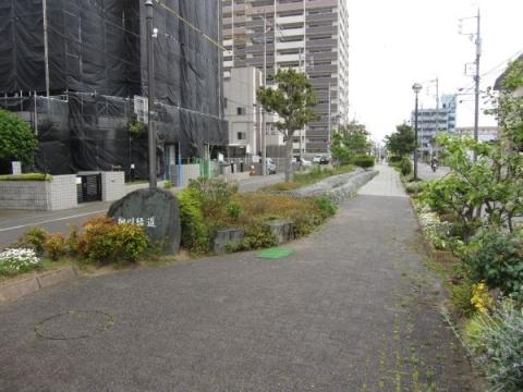 柳川緑道(浜名用水)