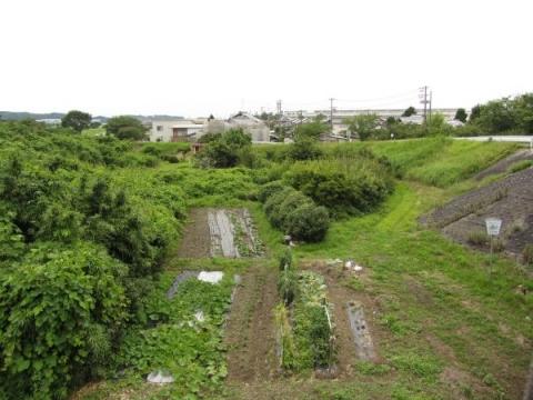 原野谷川の旧東海道跡